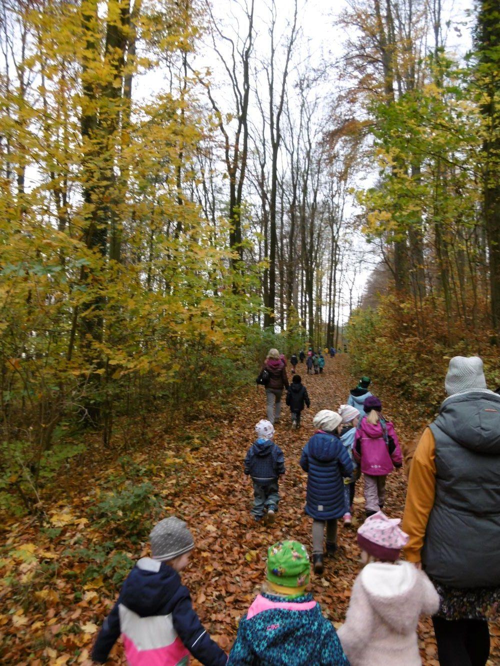 Kiga: Herbstwanderung um die Landeskrone