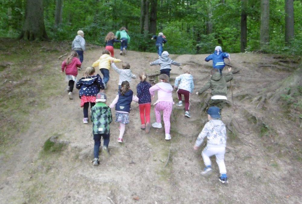 Kindergarten: Wanderung um die Landeskrone